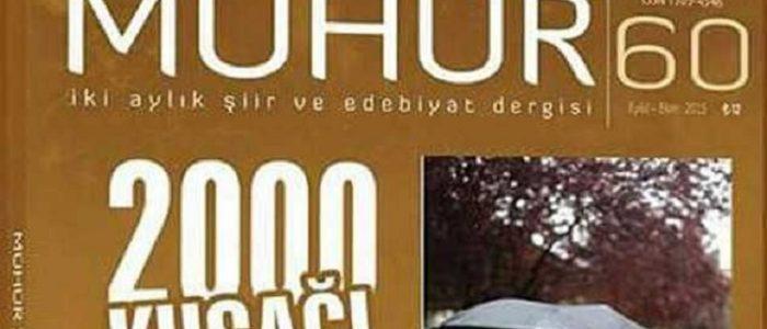 Mühür: Vasatın Var Olma Çabası - Osman Çakmakçı